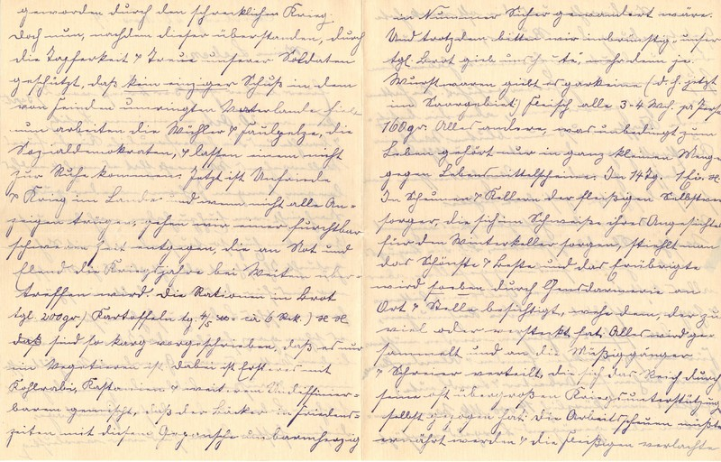 Lenchen Berdel to Eugen Klee, November 22, 1919, p. 2 and p. 3