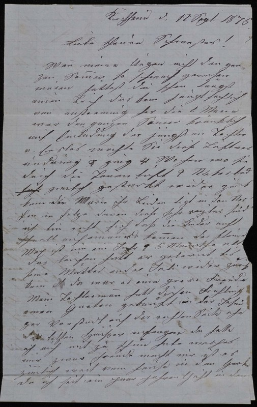 Höfeln family letter, September 12, 1875