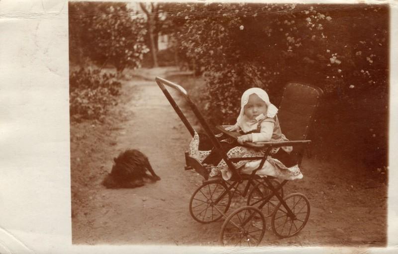 Eugen Haas to Eugen and Emma Klee, July 5, 1919, postcard #2 (front)