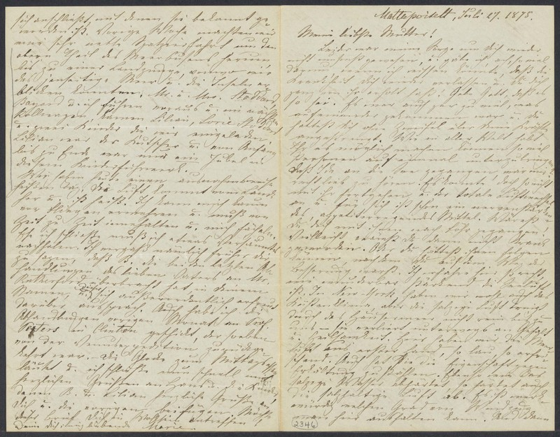 Marie Taylor to Lina Hansen, July 27, 1875