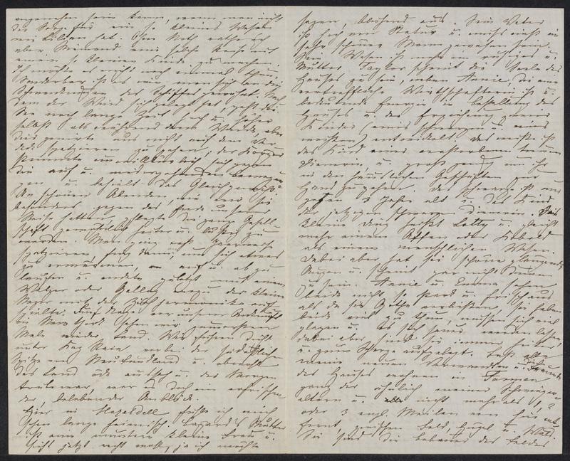 Marie Hansen Taylor to Lina Hansen, November 3, 1858, p. 2 and p. 3