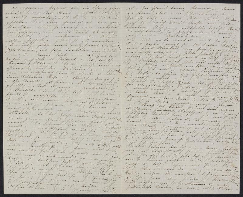 Marie Hansen Taylor to Lina Hansen, November 14, 1858, p. 2 and p. 3